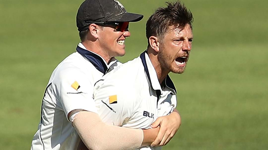 James Pattinson Has Absolutely Torn Apart Queensland In The Sheffield Shield