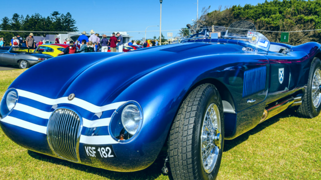 Jaguars Prowl Port Stephens This Weekend