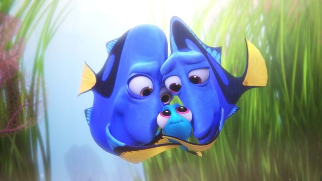 You Can Find Dory In Townsville This Friday!