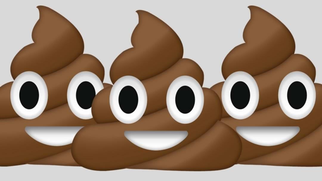 You Can Earn $50 By Donating Your Poop