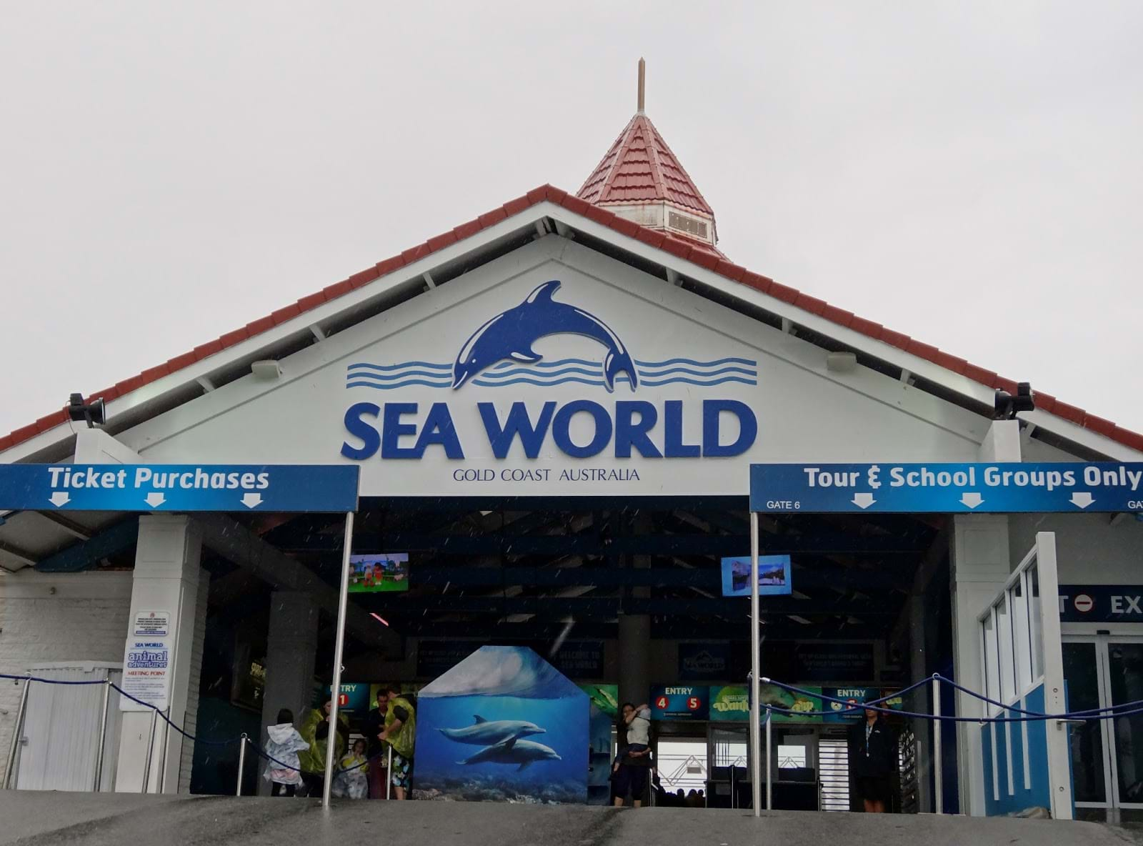 Article heading image for One Of Sea World's Newest Residents Has Passed Away