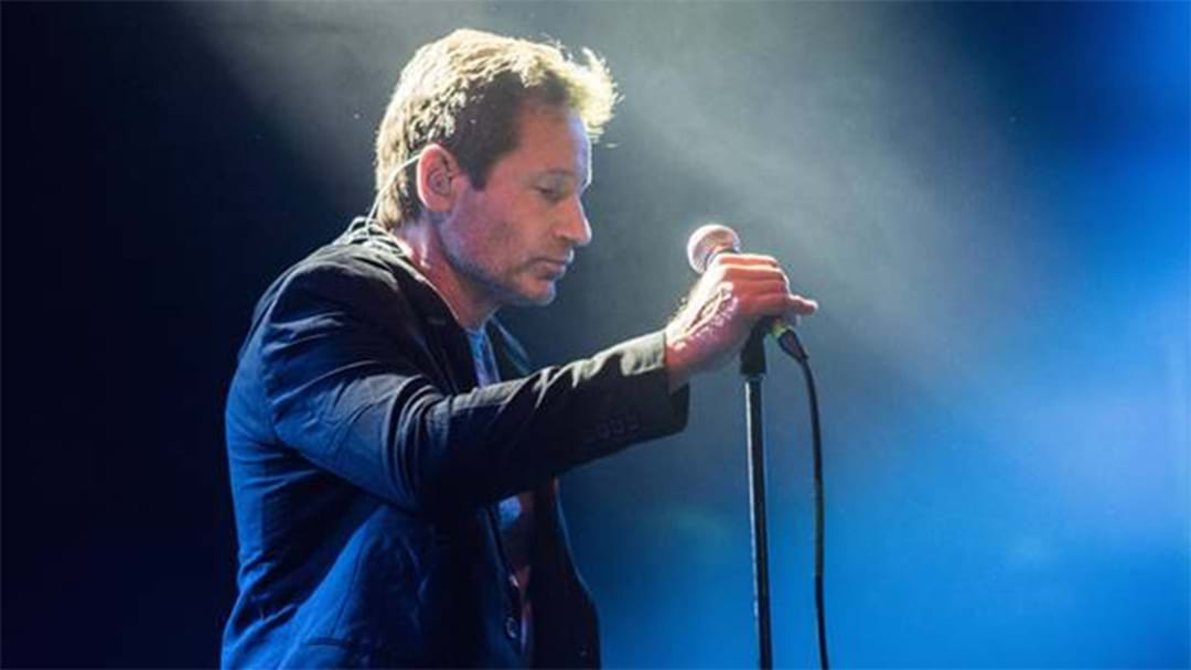 See David Duchovny Live In Concert