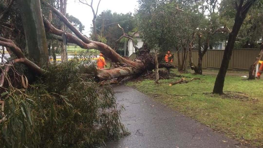 SES Call For Residents To Be Prepared