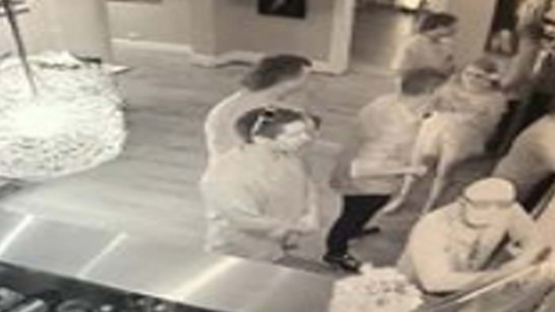 A Man Casually Steals An $8000 Painting Off The Wall At A Winery