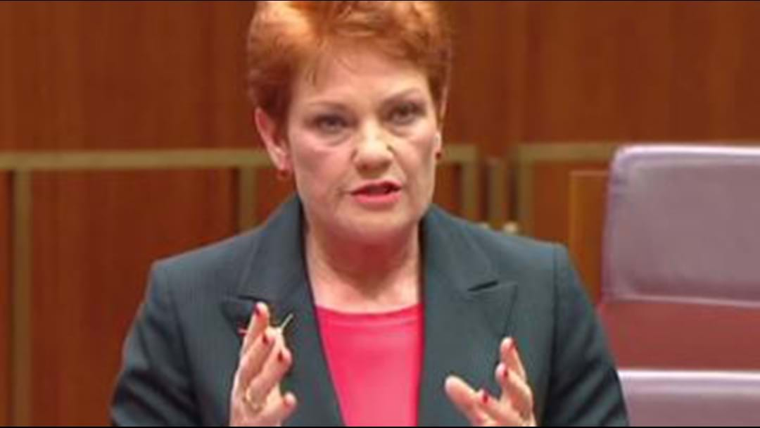 Pauline Hanson Slammed for Disabled Students Proposal