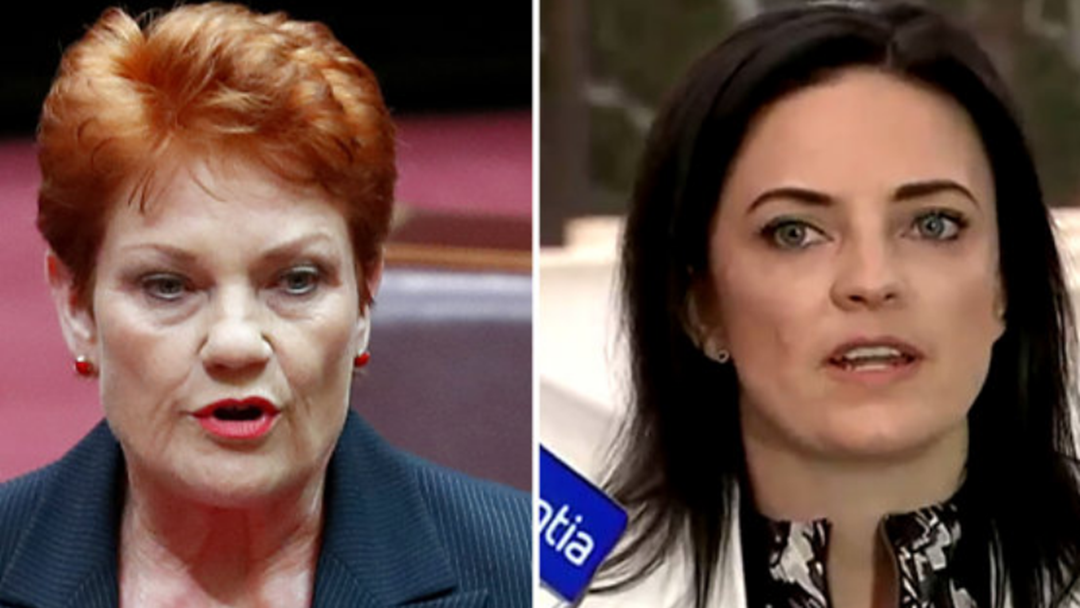 Labor MP With Autistic Son Slams Pauline Hanson's 'Uneducated' Comments