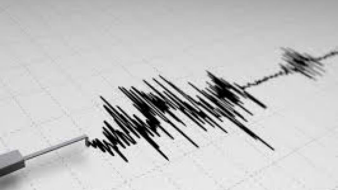 Small Quake Hits Hunter Valley