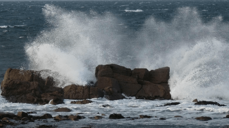 Article heading image for Strong Wind Warning Issued For The Coast