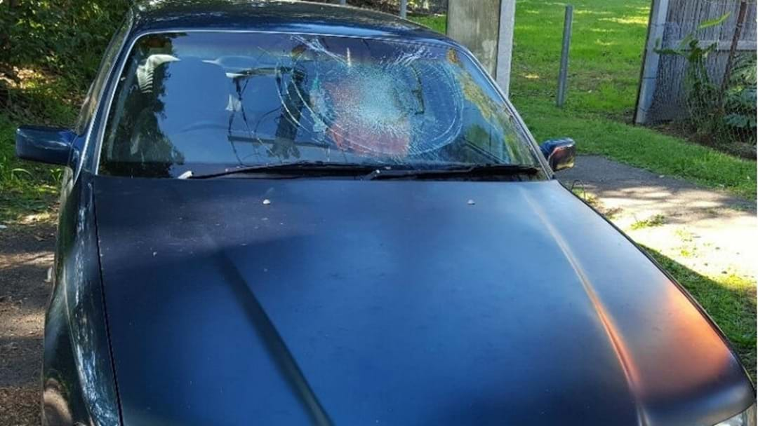 Call For Witnesses To Vicious Ramming On Riverside Expressway