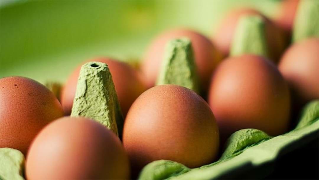 WA Free Range Egg Farm Fined $750,000 For False Labelling