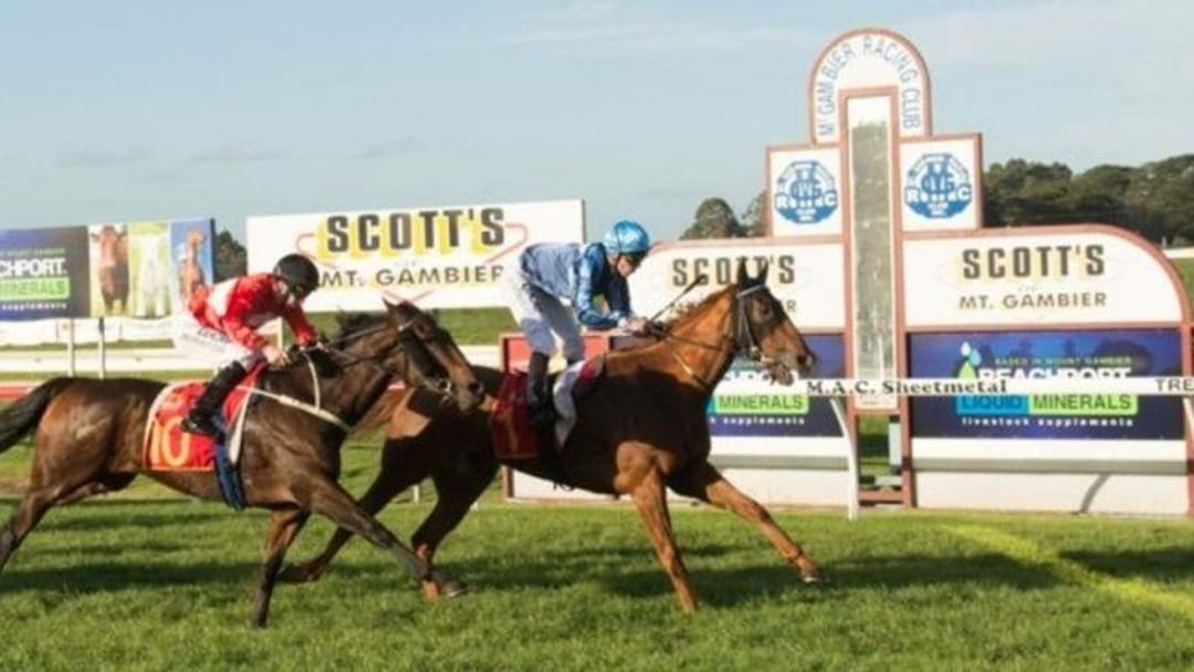 NEW All-weather race track for Mount Gambier