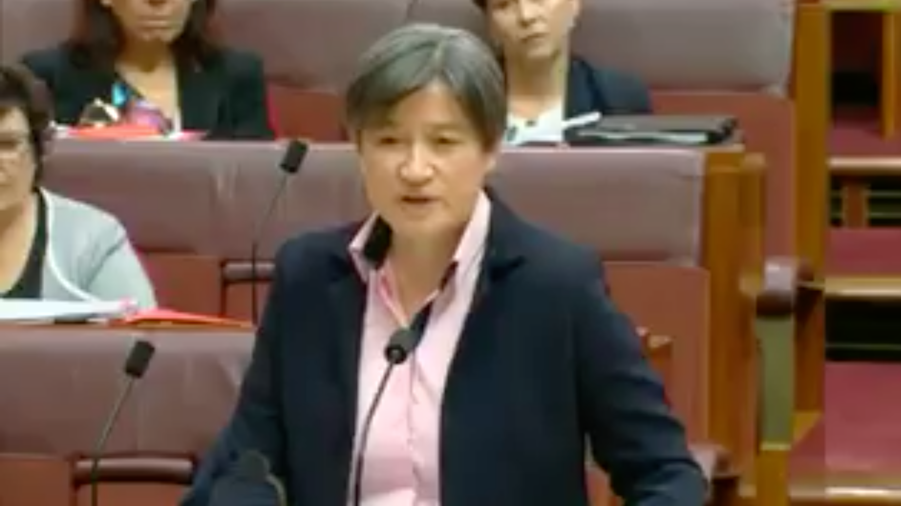 Senator Penny Wong's Brazen Retort To Same-Sex Marriage Plebiscite