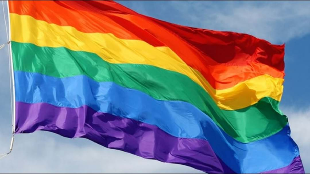 Rainbow flag returns to Hobart Town Hall