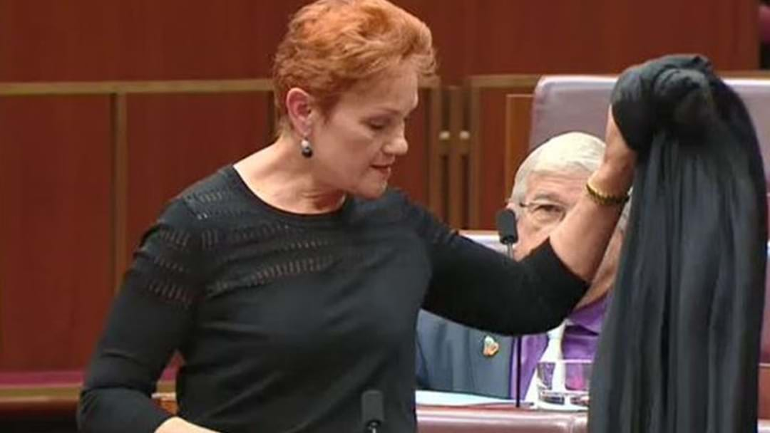 Pauline Hanson Explains Why She Wore A Burqa In Parliament