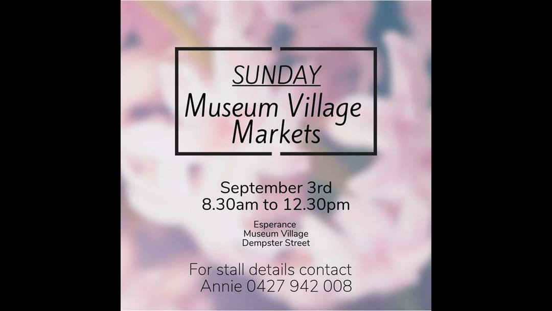 Museum Village Markets back on