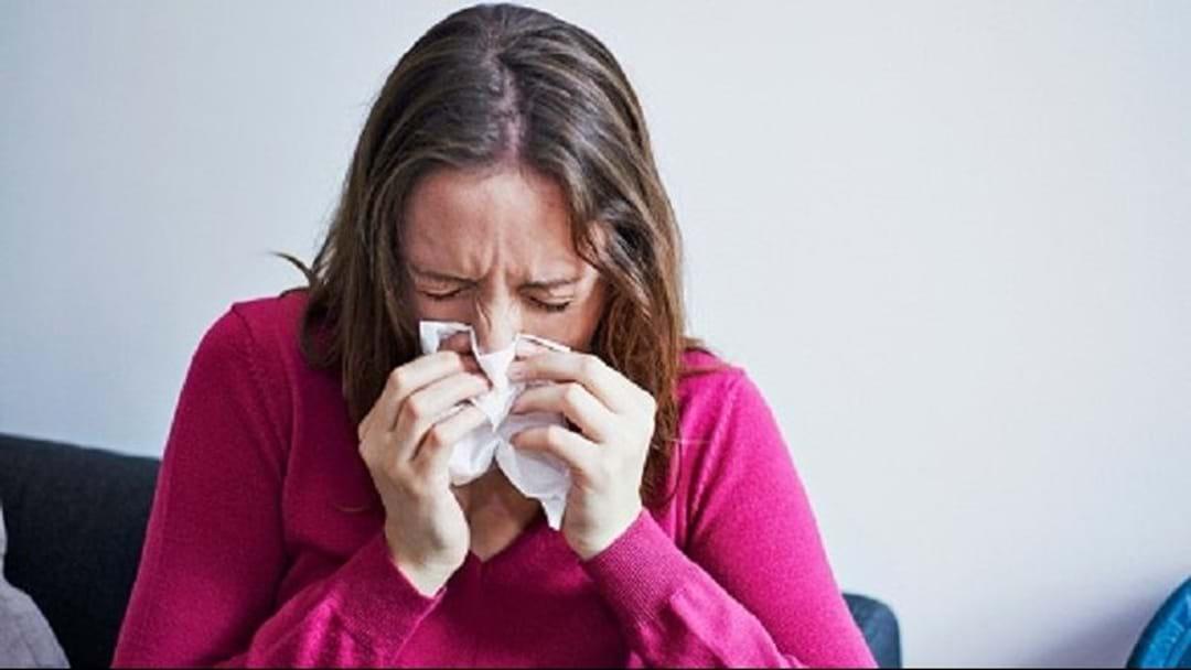 Free Flu Jabs From Bunnings