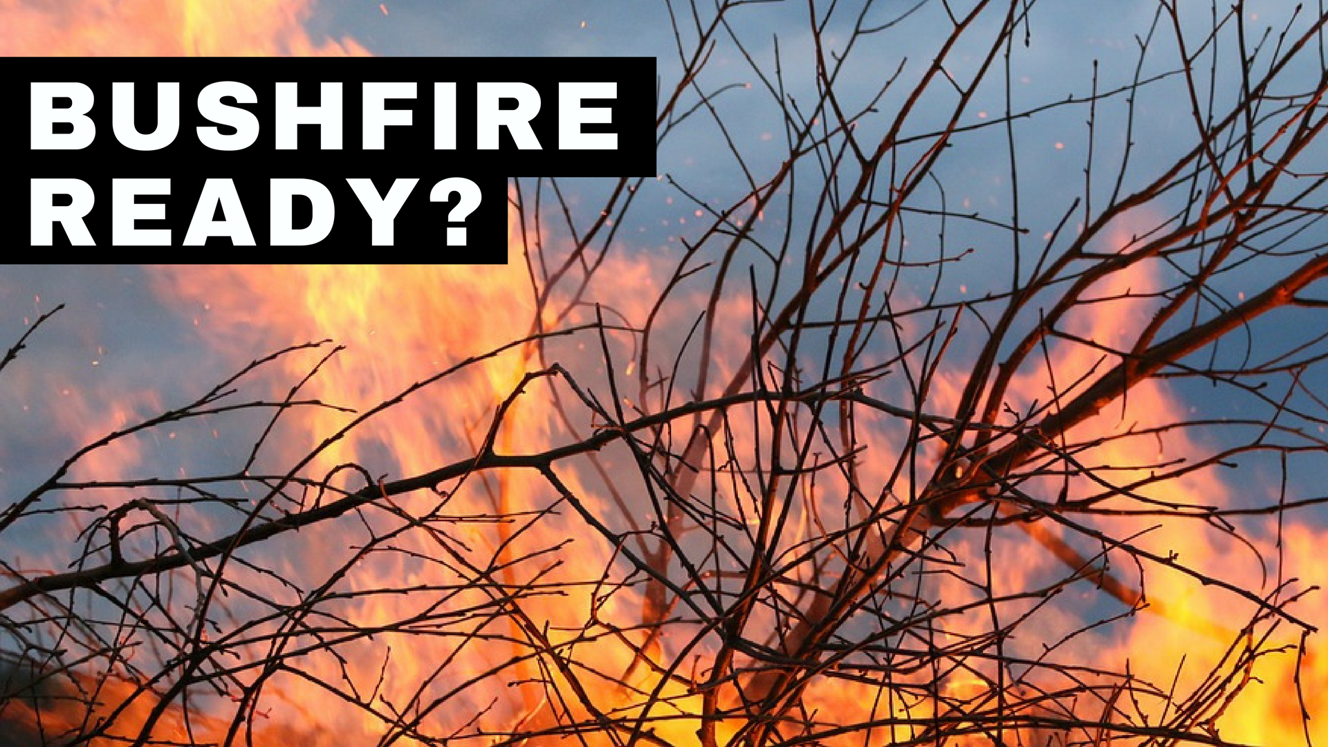 Article heading image for Bushfire Season Starts Today