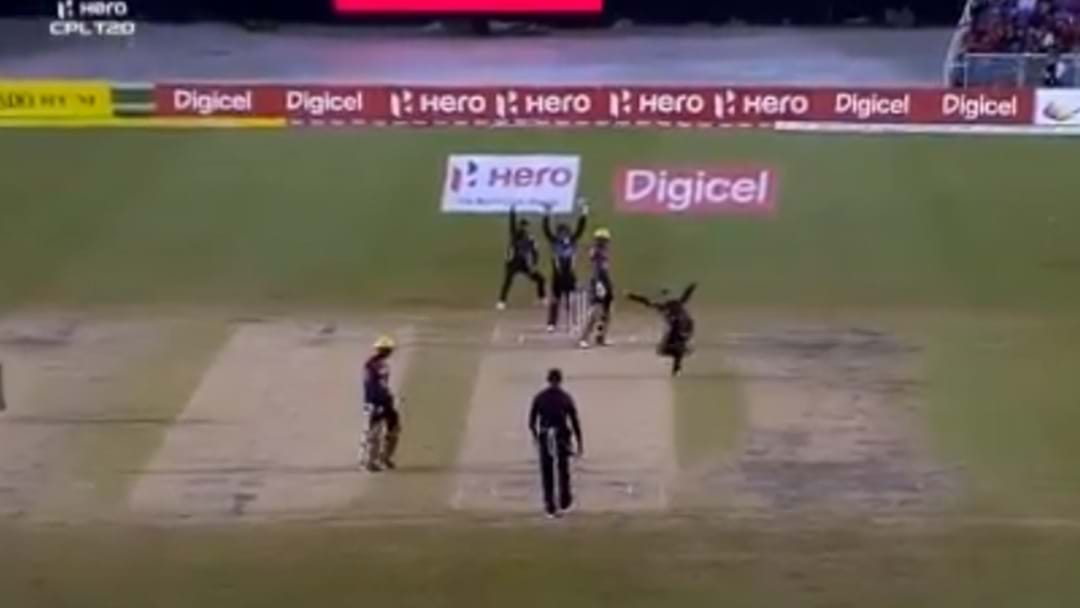 South Africa Cricketer Cracks It At 'Not Out' Decision
