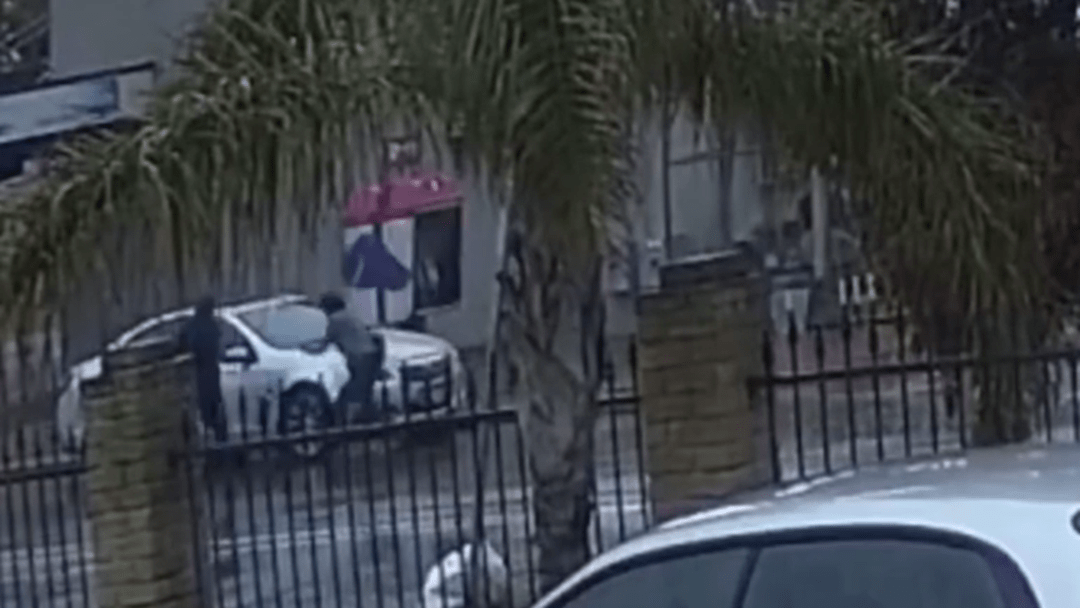 Woman Fights Car Thief With Umbrella