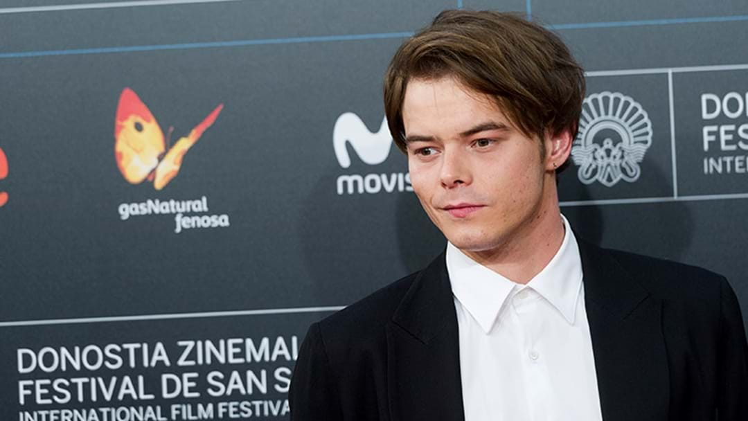 Stranger Things Star Allegedly Caught With Cocaine At A US Airport