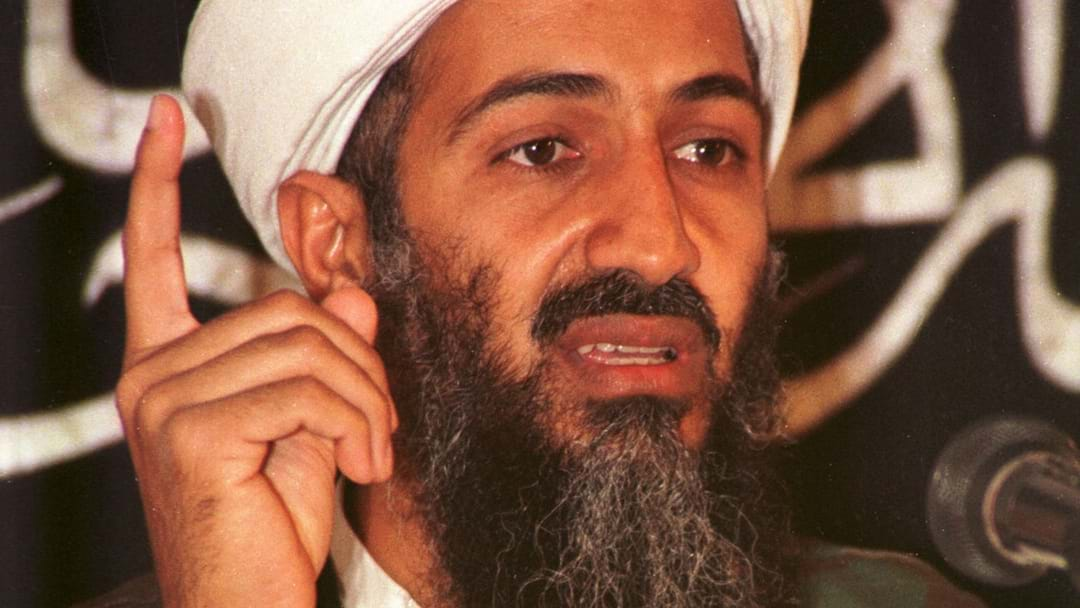 Computer Records Reveal Osama Bin Laden Loved Porn And Gaming