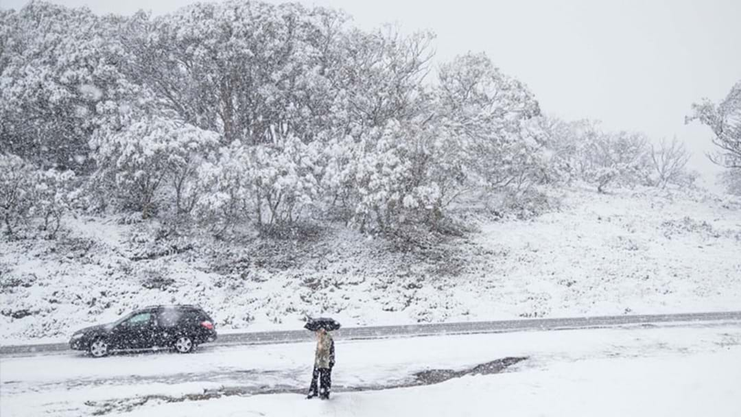 It's Currently Snowing In Perisher