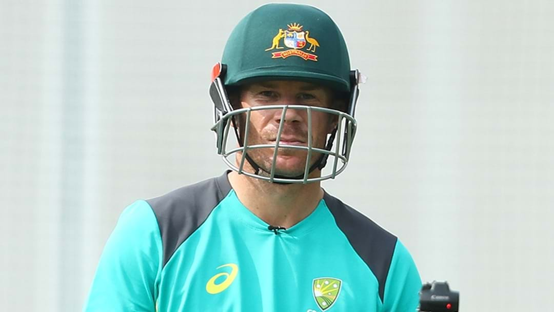 David Warner Apologises For His Role In The Ball Tampering Scandal