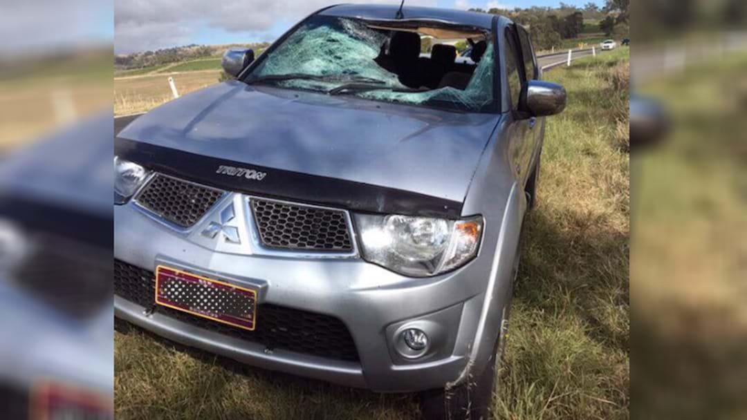 Driver's Close Call After Epic Roo Crash