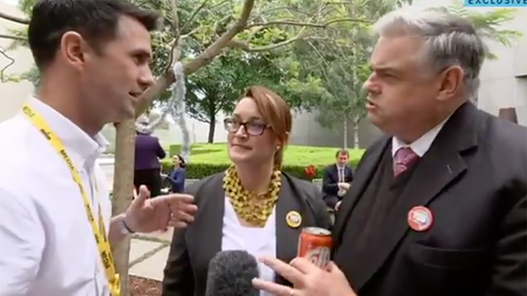 Labor MP Calls ABC Reporter A 'Maggot'