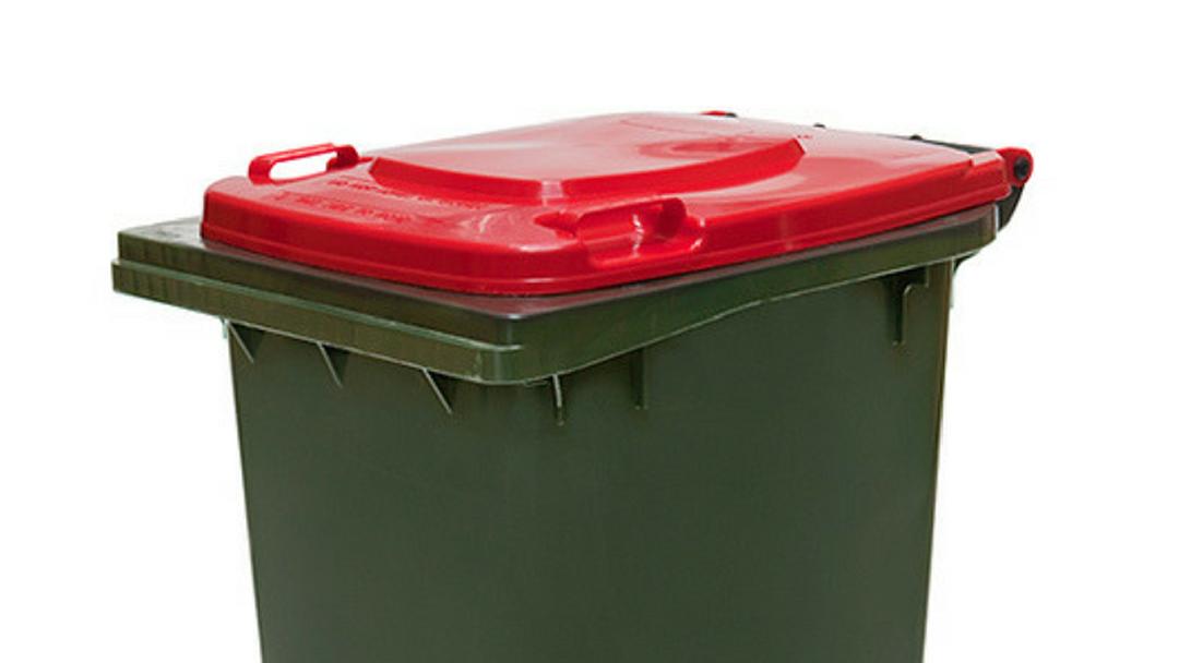 Closer Litter Monitoring Across Port Macquarie