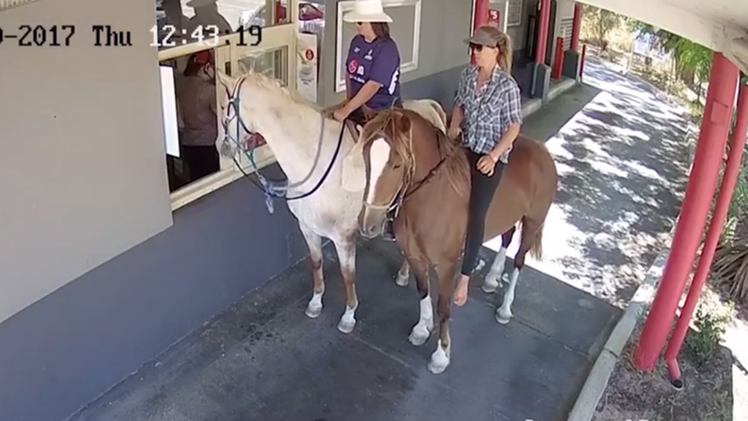 Some Unusual Customers Visit A Perth Drive-Thru