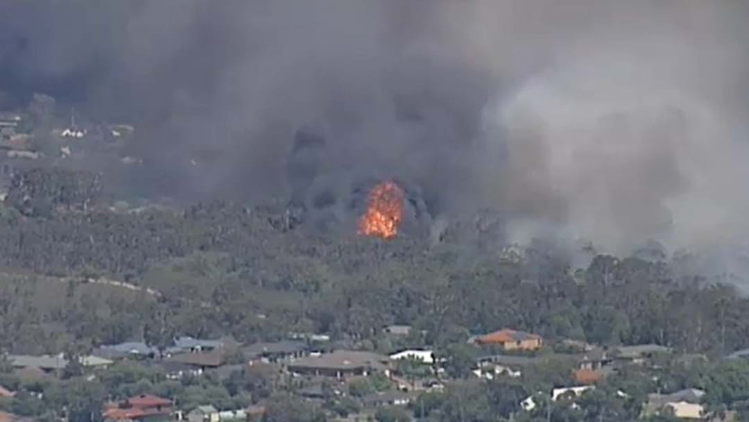 Bushfire Not Yet Under Control In Carrum Downs