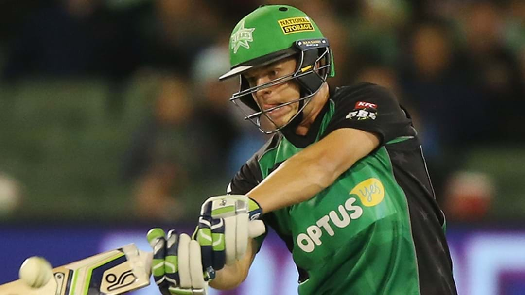 Melbourne Stars All-Rounder Axed From NZ Side After Big Night Out