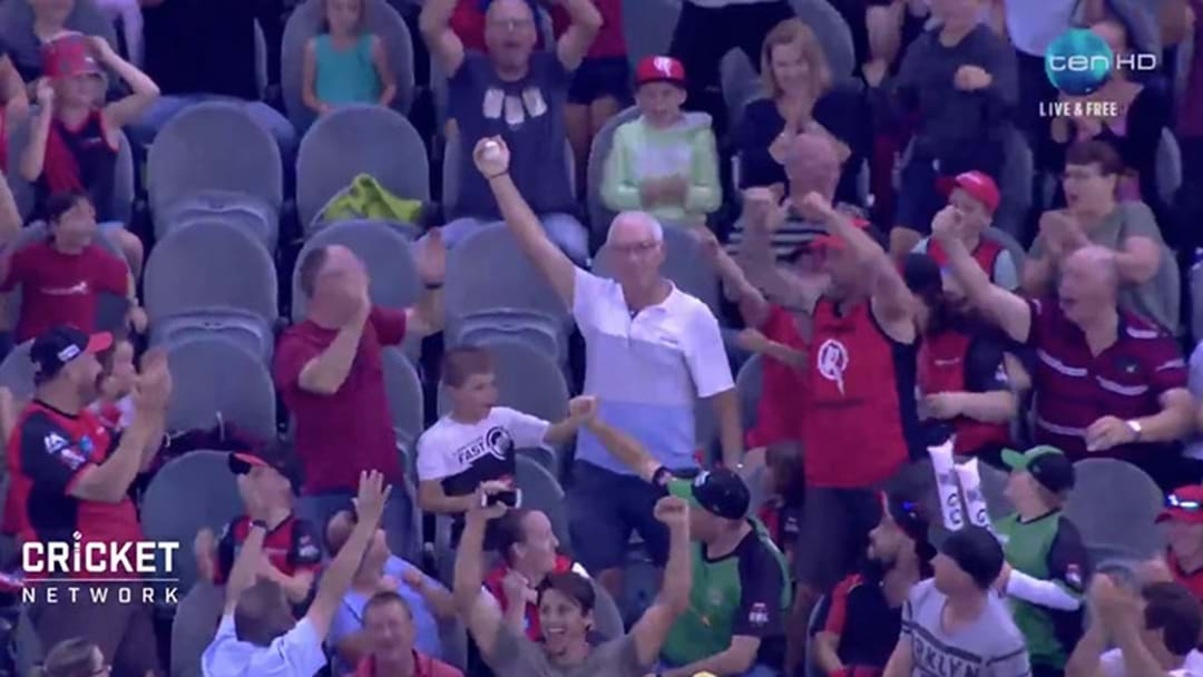 Forget Glenn Maxwell, An Old Bloke In The Crowd Took The Catch Of The BBL Last Night