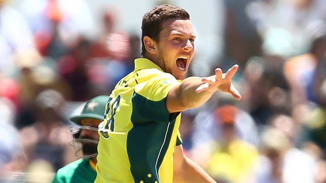Josh Hazlewood Ruled Out Of Second ODI