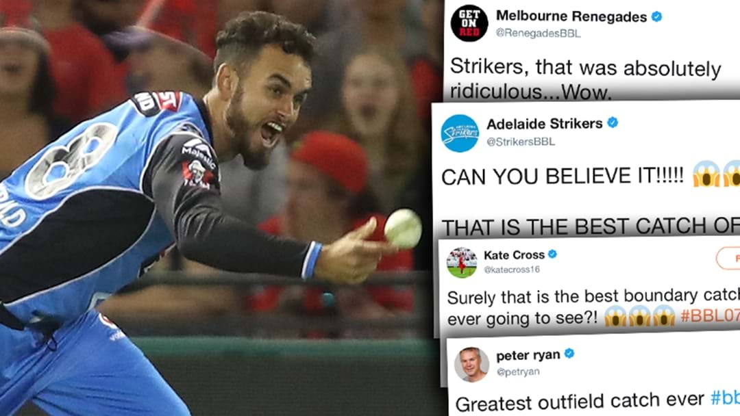 Fans React To 'The Greatest Catch Of All Time'