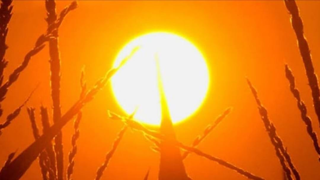 Heat Health Warning in Central Victoria today