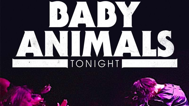 Article heading image for Baby Animals Released A New Track And It Rocking Rocks