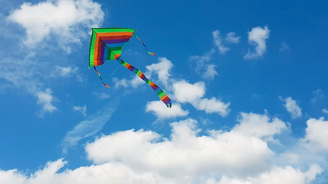 Best Kite Flying Spots On The Central Coast