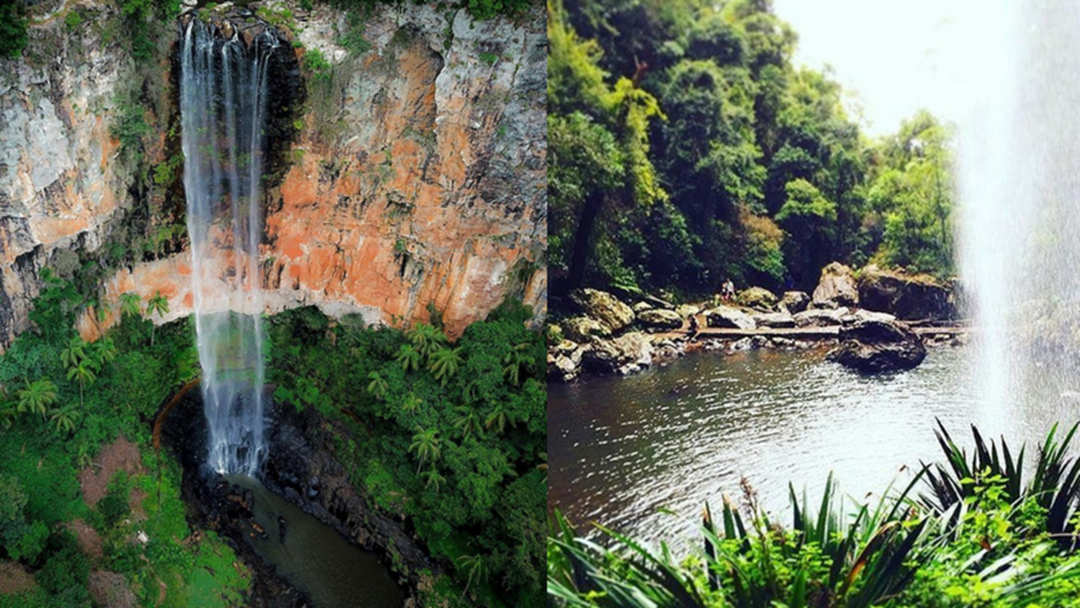 How To Make The Most Of A Day In The Gold Coast Hinterland