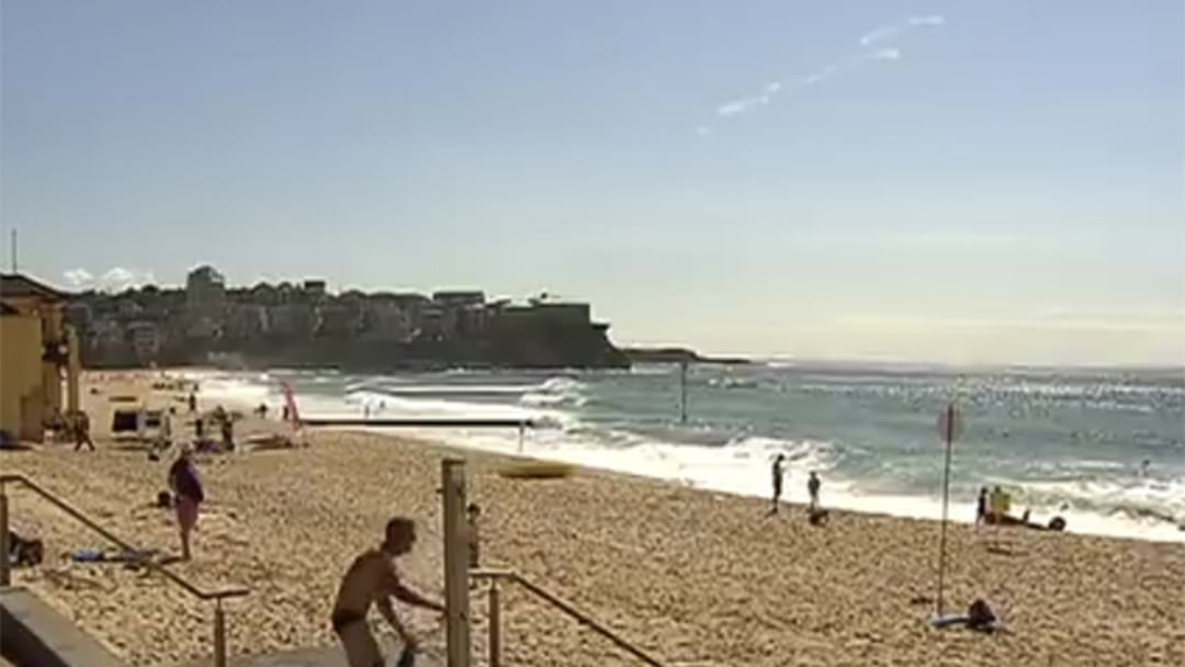 Sydney Beach Crowned The Best In The Country