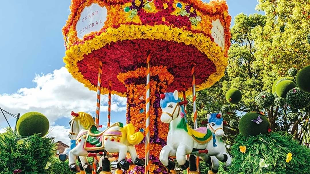 Toowoomba's Carnival of Flowers Blooms Bright