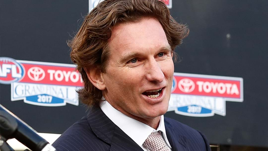 AFLCA CEO Mark Brayshaw Says Other Clubs Have Sounded Out James Hird