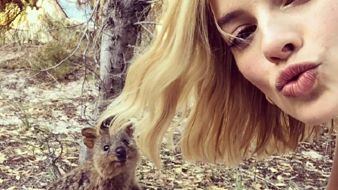 Margot Robbie: Queen Of The Quokkas