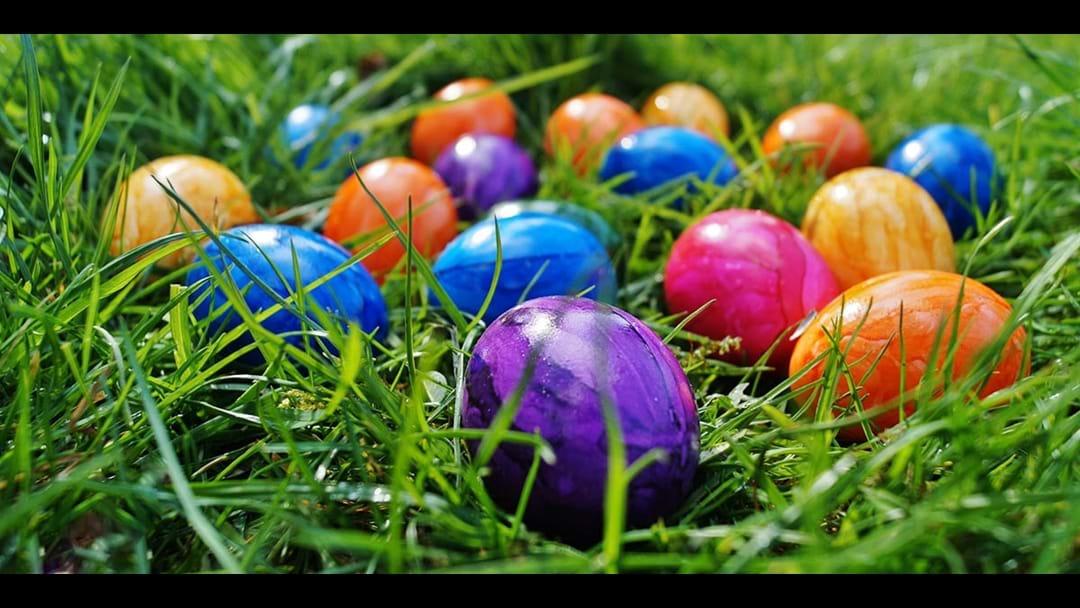 Sean's Great Esperance Easter Egg Extravaganza