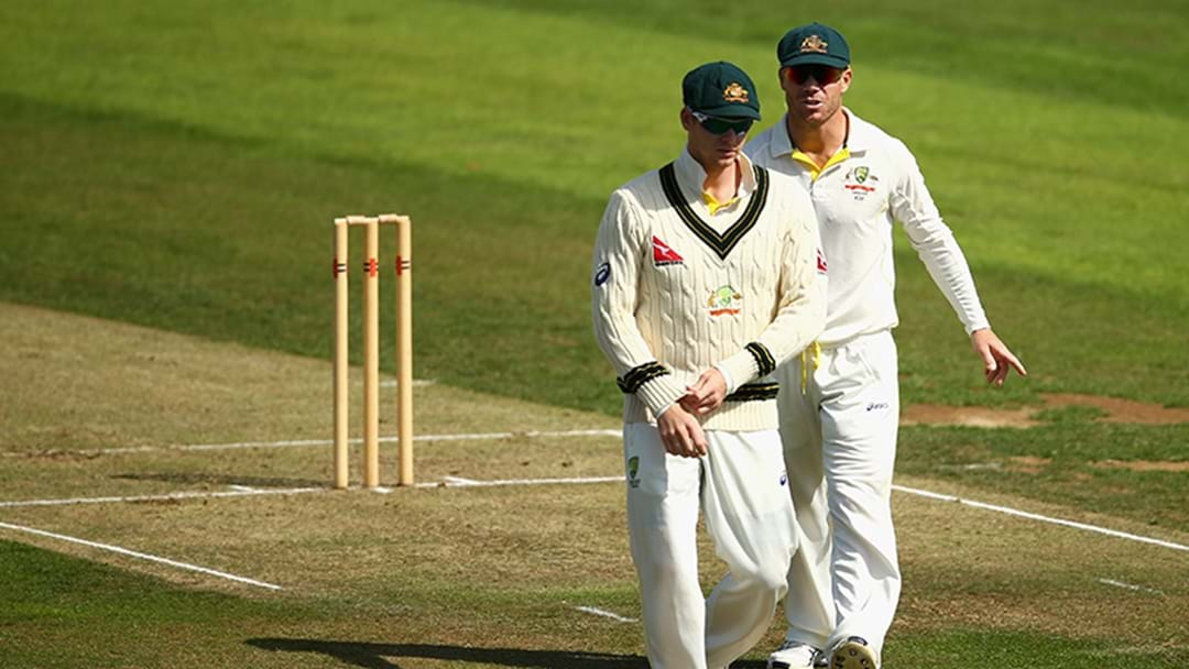 Steve Smith And David Warner Have Stood Down From The Captaincy And Vice-Captaincy