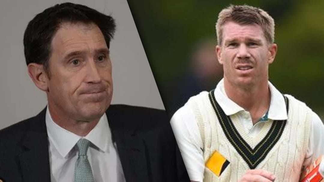 """Cricket Australia Has A Real Appetite To Destroy Dave Warner At The Moment"""