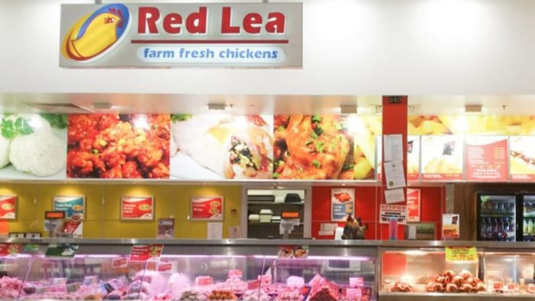 Hundreds Of Red Lea Chickens Factory Workers Lose Their Jobs