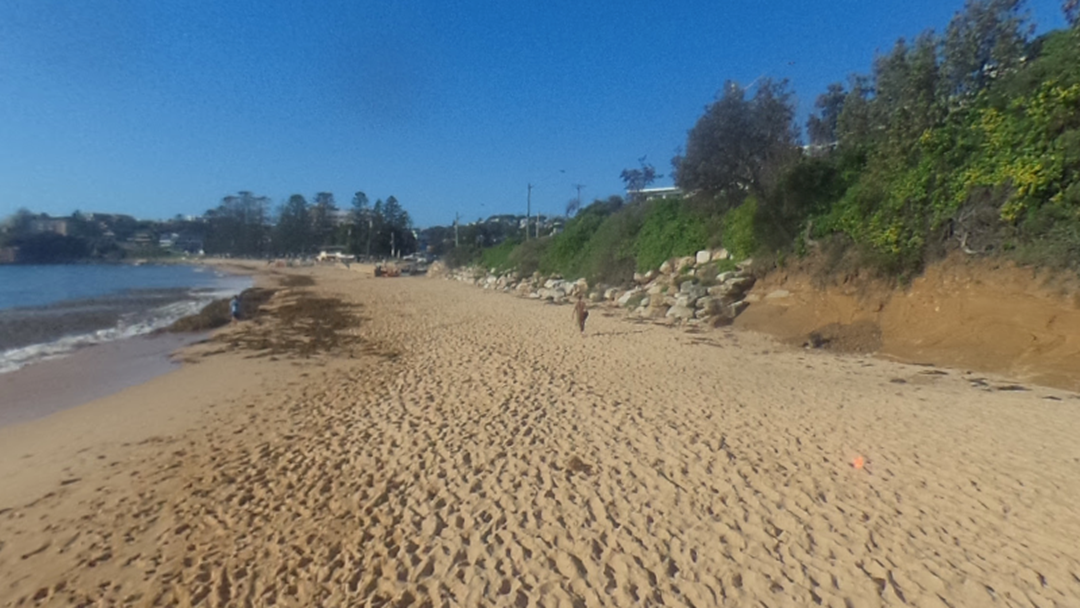 Urgent Report On Terrigal, Wamberal Beaches To Be Developed