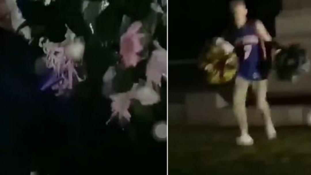 Teen Thugs Filmed Destroying Box Hill Anzac Memorial